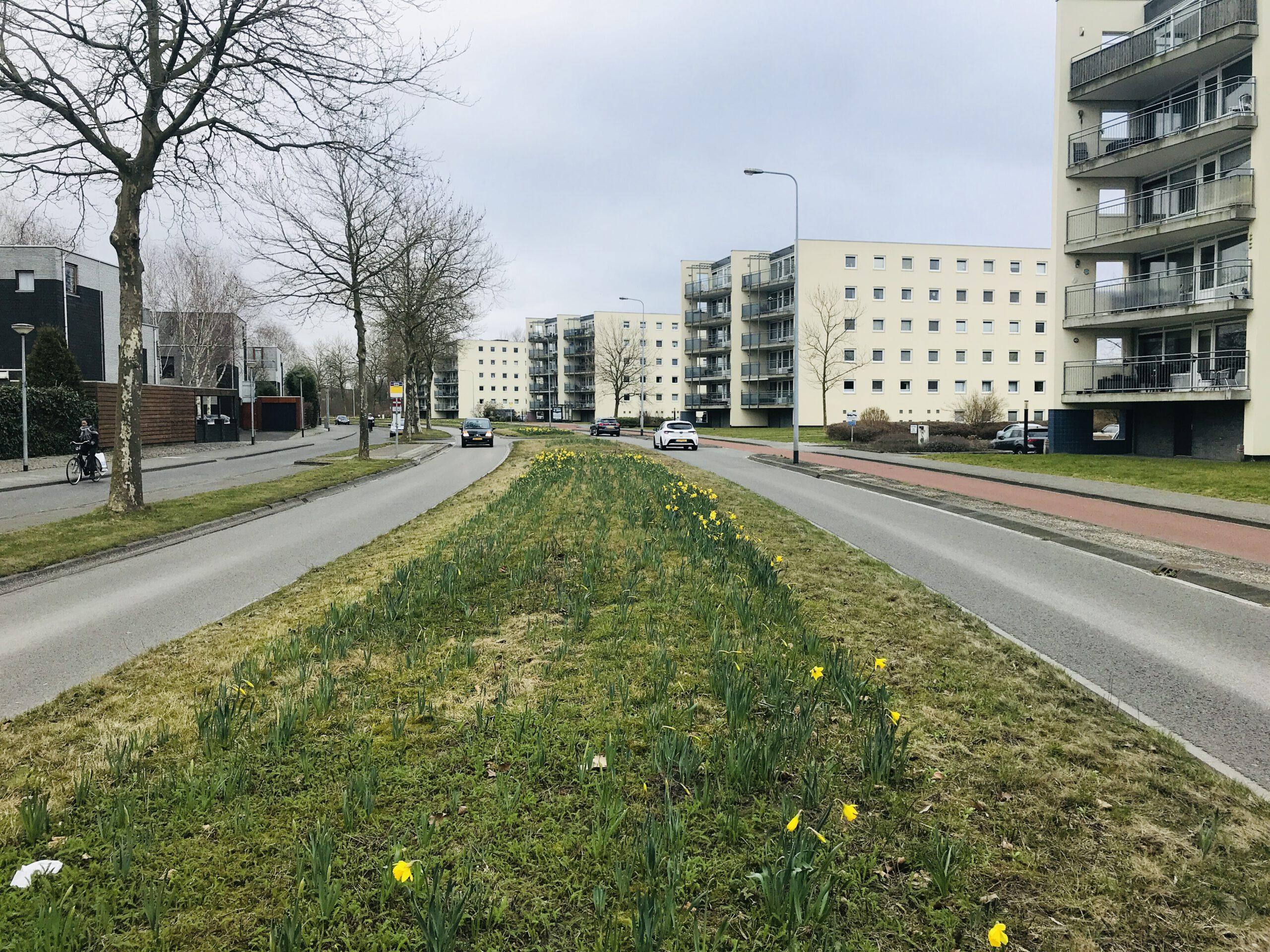 Siersteenlaan, Groningen, Grasstrook, Middenberm, Vinkhuizen, De Held, Persleiding, Het Roege Bos, Hoogkerk
